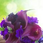 Spring Weddings: Calla Lilies